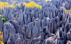 Madagaskar - Reisen - Tsingy de Bemaraha