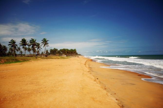 Strand - Palmen - Benin