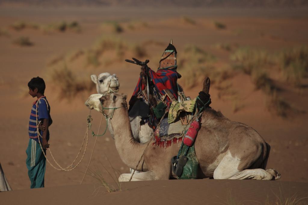 Mali - Reisen - Einreise