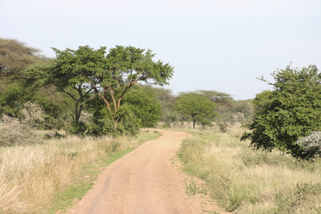 Nigeria - Reisen - Landschaft