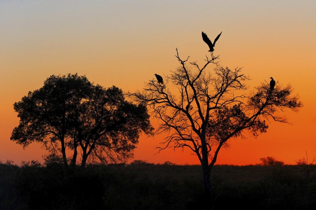 Liberia - Reisen - Sonnenuntergang