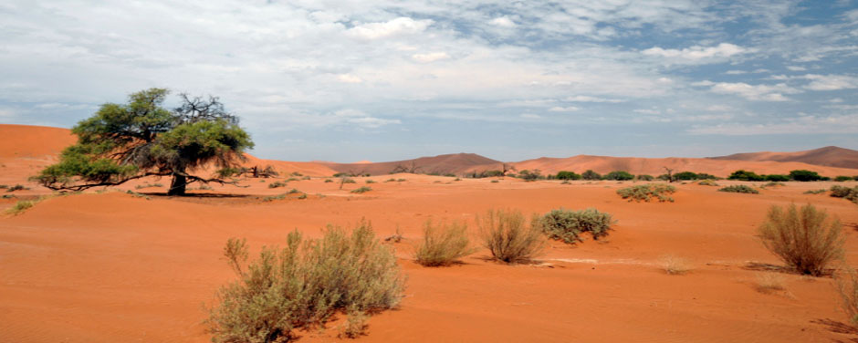 Namibia-Startseite