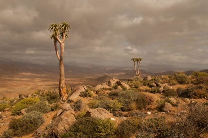 Südafrika - Landschaft - Richtersveld Nationalpark