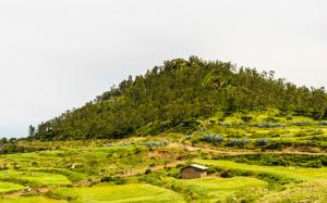 Äthiopien - Reisen - Axum
