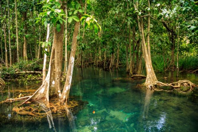Guinea-Bissau - Reisen - Nationalparks