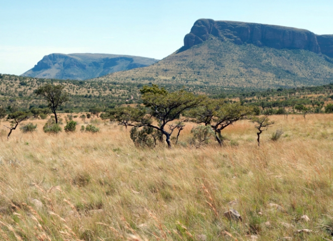 Namibia - Reisen - Waterberg