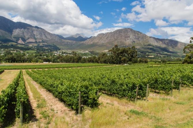 Südafrika - Reisen - Franschhoek