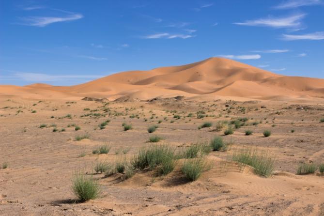 Südafrika - Reisen - Wüste