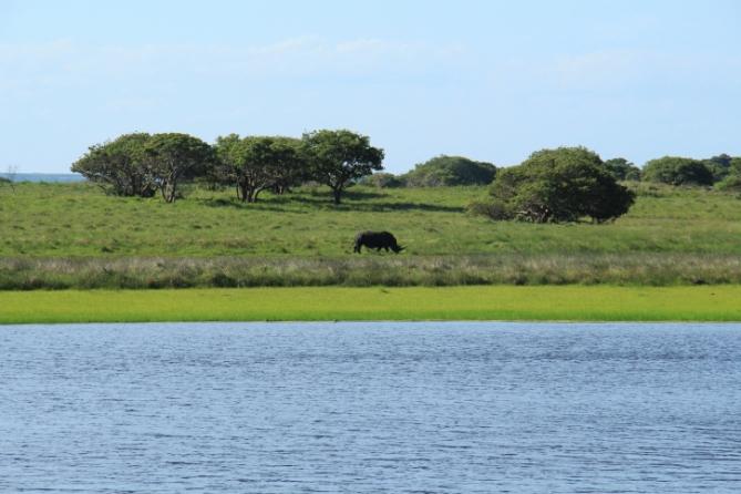 Südafrika - Reisen - Greater St. Lucia Wetland Park