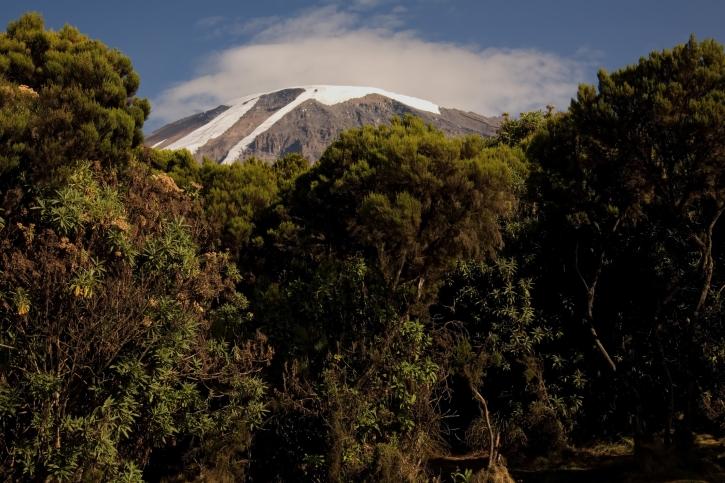 Ausblick - Mweka Route - Kili Besteigung