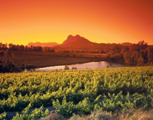 Winelands (Paarl) - Südafrika Rundreisen