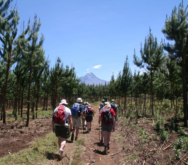 Rongai Route - Kilimandscharo
