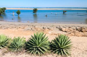 Madagaskar - Individualreisen - Ifaty
