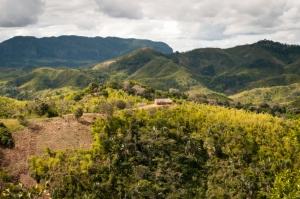 Madagaskar-Analamazaotra Nationalpark erleben mit touring-afrika.de