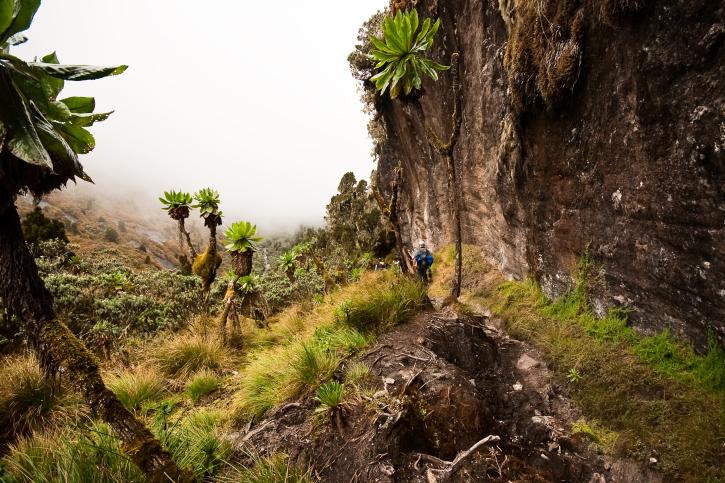 Uganda Trekking und Wandern