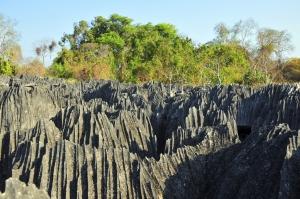 Mit touring-afrika.de im Tsingy de Bemaraha Nationalpark-Madagaskar