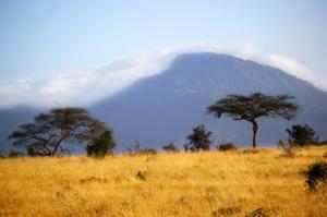 Kenia Safari mit kombinierten Badeurlaub-touring-afrika.de
