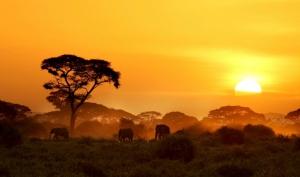 Kenia Safari-Reisebericht touring-afrika.de