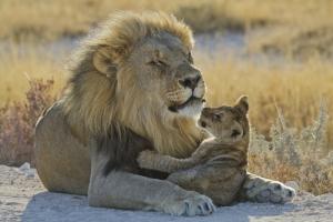 mit touring-afrika.de Namibia Individualreisen zum Mudumu Nationalpark