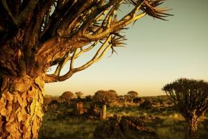 Mudumu Nationalpark Namibia- Südafrika Reisen