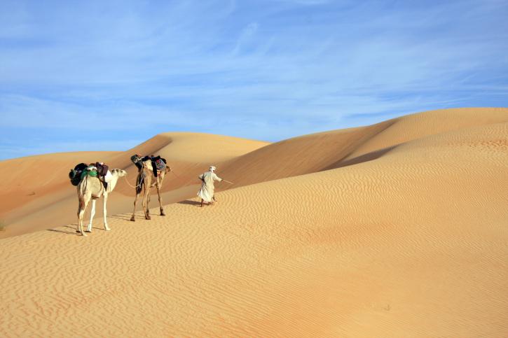 Karawane in der Sahara, Mauretanien
