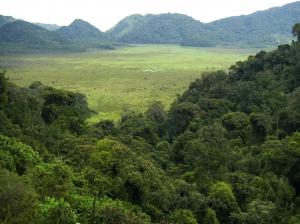 Nyungwe Forest-Ruanda- Ruanda Gruppenreise