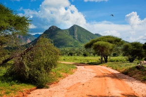 mit touring-afrika.de-Kenia Reisen im Tsavo West Nationalpark