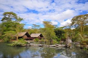 Afrika Reisen mit touring-afrika.de