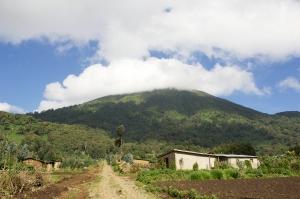 mit Touring-afrika.de- Ruanda Gruppenreisen- Volcanoes Nationalpark-Ruanda