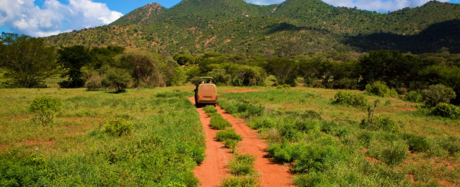 Kenia Reisen- Big Five Kenia Safari