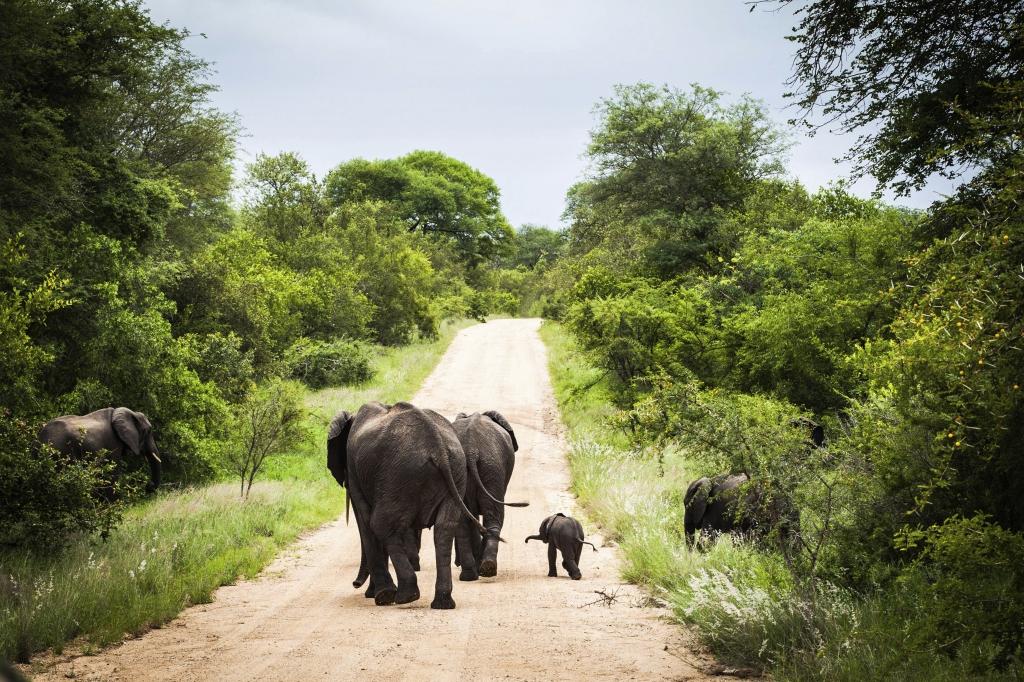 Südafrika  Rundreise -  mit touring-afrika.de