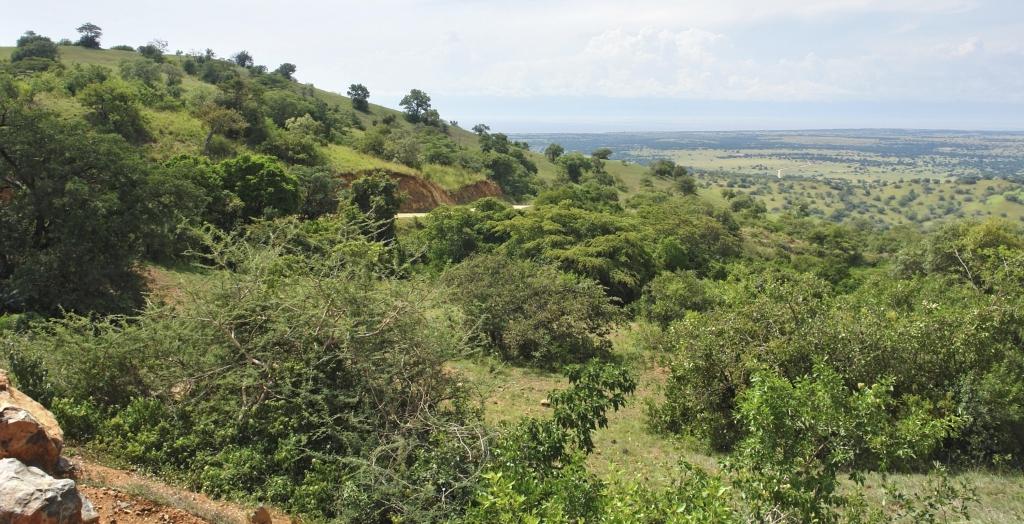 Uganda Ruanda Rundreise mit Touring Afrika