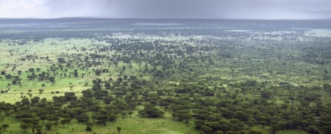 Uganda Reisen- Reisebericht Uganda