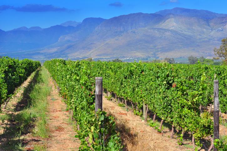 Stellenbosch, Winelands Südafrika