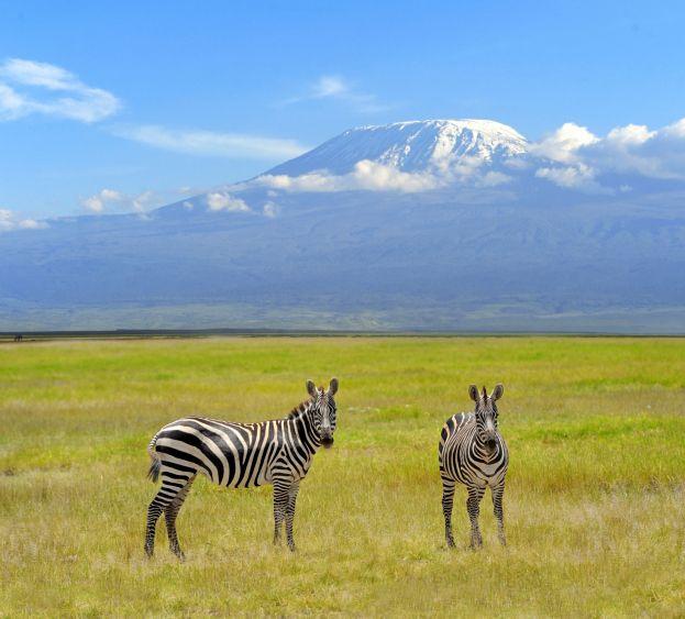 Auf Individualreise mit Safari die Route selbst planen
