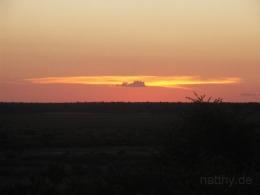 Botswana - Safari - Reisen