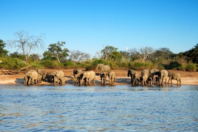 Botswana - Reisebericht - Okawangodelta