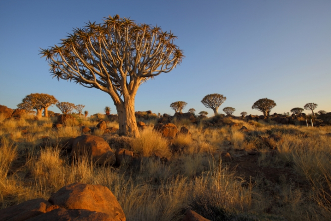 Namibia - Botswana - Sambia - Reise