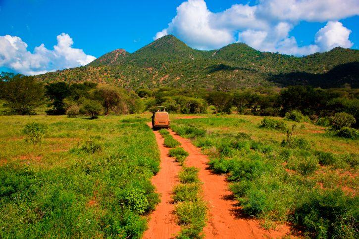 So sieht es auf Safari durch Kenia aus