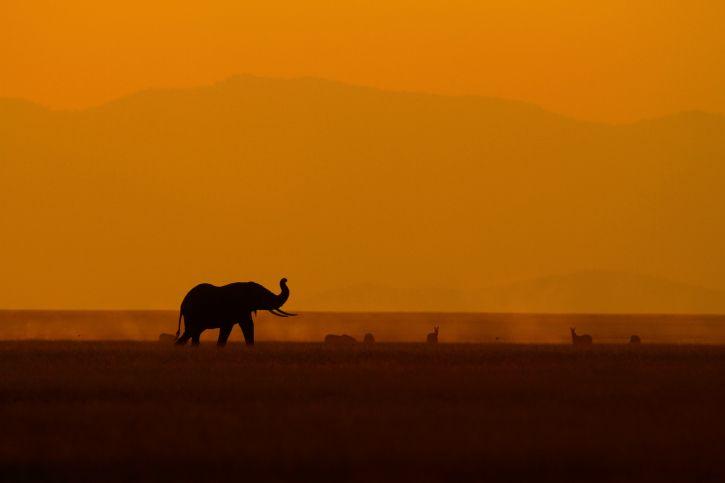 Absoluter Klassiker: Sonnenuntergang auf individueller Kenia-Safari genießen