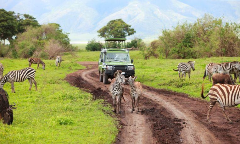 Zur besten Reisezeit in Tansania kommt man auf seiner Safari gut vorwärts