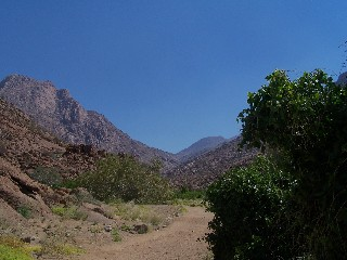 Namibia - Reisen - Brandberg