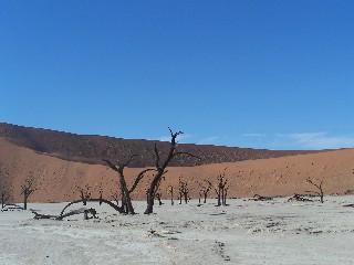 Sossussvlei - Namibia - Reise