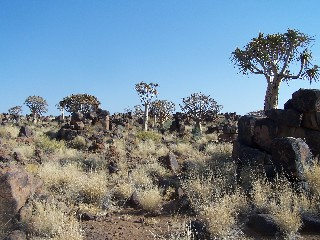Reisebericht - Namibia - Rundreise