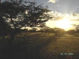 Namibia - Reisen - Wunderbaum