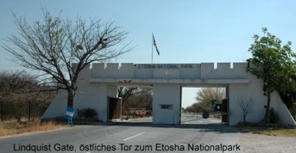 Namibia - Reisen - Etosha Nationalpark