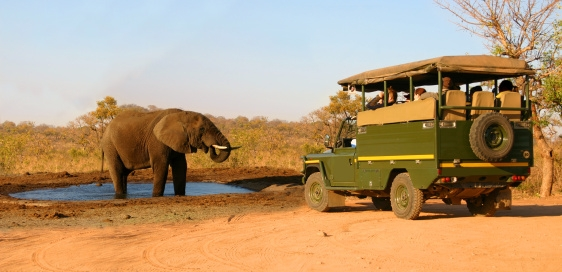 Safari - Afrika - Jeep - Minibus