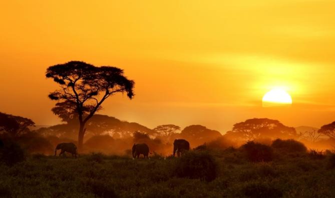 Sonnenuntergang - Kenia