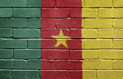 Rundreise Kamerun - Flagge auf Mauer - Kamerun