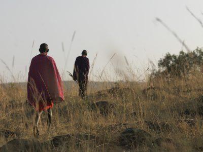 Lokale Guides - Masai Mara - Kenia